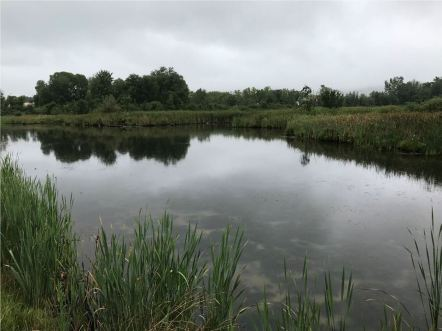 Housatonic River image