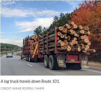 NH biomass layoffs