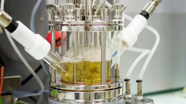 Carbios biorecycling