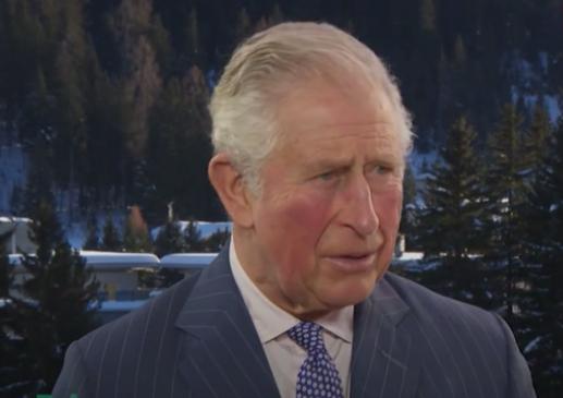 Prince Charles at Davos