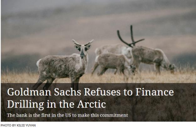 arctic divestment