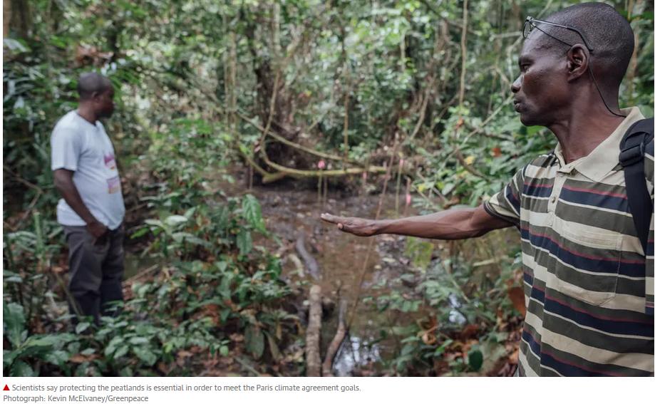 Congo bog play