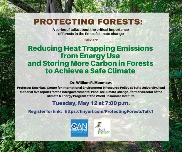protecting forests