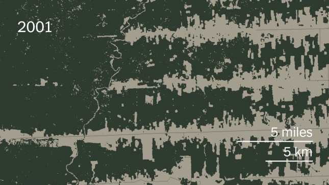 deforestation Alto Paraiso 2001