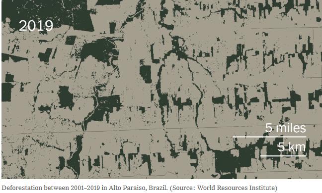 deforestation Alto Paraiso 2019