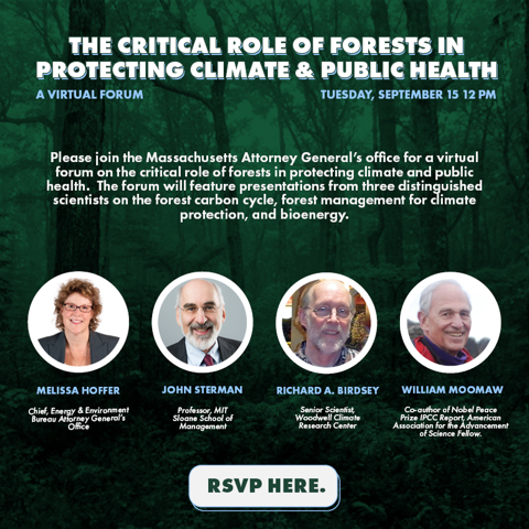 role of forests