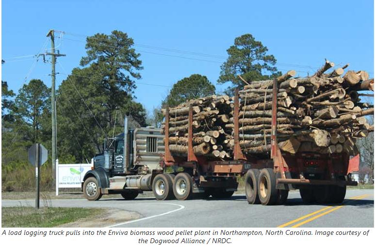 biomass burning surges