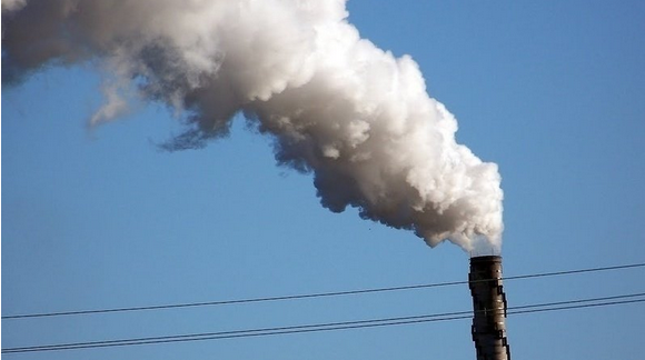 take action on biomass