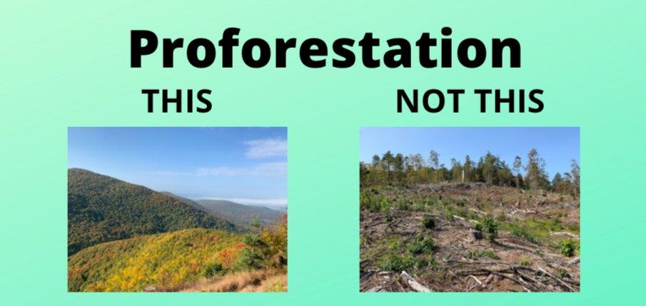 proforestation